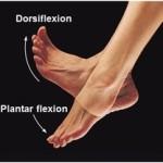 crossfit ankle dosiflexion